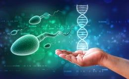 esperma humana 3d en fondo médico fotografía de archivo libre de regalías