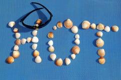 Espetáculos, seashells na maneira da palavra quente Imagem de Stock