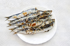 Espeto de sardinas Royalty Free Stock Images