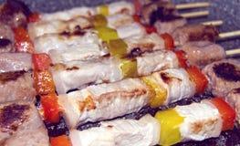 Espetos com carne e carne da galinha fotografia de stock royalty free