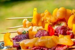 Espetos crus da galinha e da carne que descansam em uma bandeja com um fundo verde Fotografia de Stock