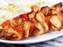 Espetos da carne de porco com salada Fotos de Stock Royalty Free