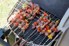 Espetos da carne e dos vegetais no assado Foto de Stock