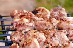 Espetos do assado com carne Foto de Stock Royalty Free
