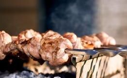 Espetos do assado com carne Fotos de Stock