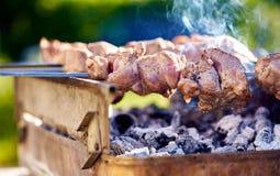 Espetos do assado com carne Fotografia de Stock Royalty Free