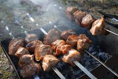 Espetos do assado com carne no soldador Foto de Stock