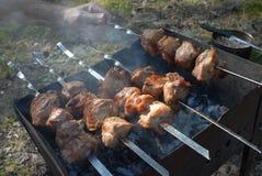 Espetos do assado com carne no soldador Imagens de Stock
