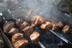 Espetos do assado com carne no soldador Fotos de Stock Royalty Free