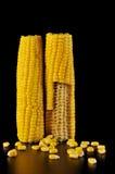 Espiga de milho Imagens de Stock