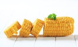 Espiga de milho Imagem de Stock