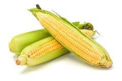 Espiga de milho doce com folhas verdes Fotos de Stock
