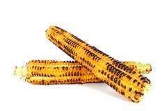 Espiga de milho grelhada Imagem de Stock Royalty Free