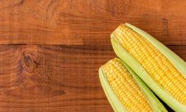 Espiga de milho madura Imagens de Stock Royalty Free