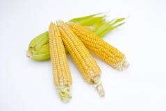 Espiga de trigo con las hojas imagen de archivo