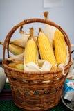 Espiga de trigo, corazones amarillos que revelan, foto del maíz en una cesta de mimbre Fotografía de archivo libre de regalías