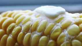 Espiga quente do milho fervido com manteiga filme