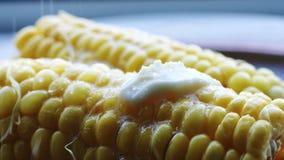 Espiga quente do milho fervido com manteiga e sal filme