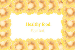 Espigas de milho cortadas em um fundo branco Isolado Quadro decorativo Macro Fundo do alimento Copie o espaço Fotos de Stock