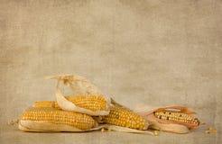 Espigas de milho do outono no papel do grunge Foto de Stock Royalty Free