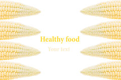 Espigas de milho em um fundo branco Isolado Quadro decorativo Fundo do alimento Foto de Stock Royalty Free