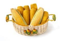 Espigas de milho na cesta decorada Fotografia de Stock Royalty Free