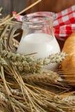Espigas de trigo secadas con leche Imagen de archivo libre de regalías
