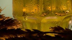 Espigas de trigo y cerveza metrajes