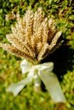 Espiguillas del trigo en un ramo que pone en la hierba Imagenes de archivo