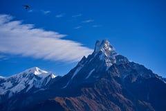 Espina de pescado de la montaña de Machapuchare en la gama Nepal de Himalaya imágenes de archivo libres de regalías