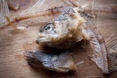 Espina de pez en una tarjeta de madera Imagenes de archivo
