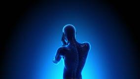 Espina dorsal lastimada del varón - dolor libre illustration
