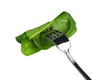 Espinaca en una fork Imagen de archivo