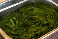 Espinaca verde fresca, empapada en agua en un cuenco del metal foto de archivo libre de regalías