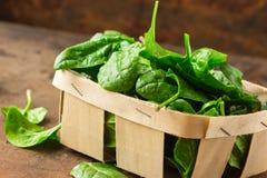 Espinafres deliciosos O espinafre orgânico fresco deixa na cesta uma tabela de madeira Dieta, conceito de dieta Alimento do veget fotografia de stock