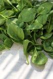 Espinafres, folhas verdes frescas no contador de cozinha imagens de stock