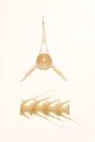 Espinas dorsales Imagen de archivo libre de regalías