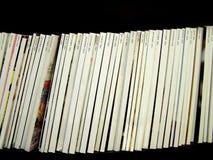 Espinas dorsales y fechas en blanco del compartimiento Imagen de archivo