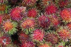 Espinhas de bloqueio do fruto do Rambutan Fotografia de Stock