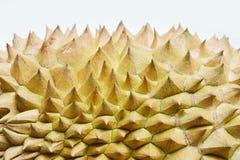 Espinho do Durian do de perto Imagens de Stock