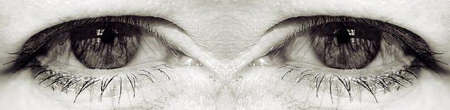 espion de yeux Image libre de droits