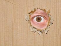 Espionnage d'oeil   photos libres de droits