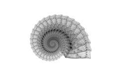 Espiral abstracto Imagenes de archivo