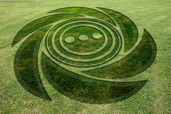 A espiral concêntrica circunda o prado falsificado do círculo da colheita imagens de stock