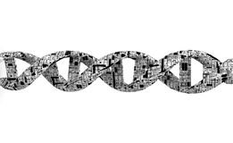 espiral de la DNA 3d Imagen de archivo libre de regalías