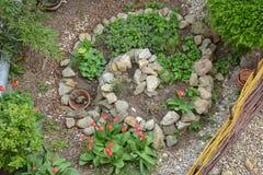 Espiral de la hierba en primavera temprana Foto de archivo libre de regalías