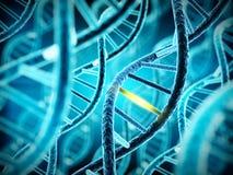 Espiral de la molécula de la DNA con la conexión única Fotografía de archivo libre de regalías