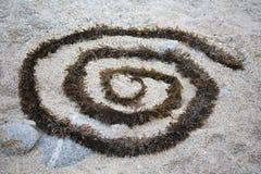 Espiral del quelpo en la arena gruesa Fotos de archivo libres de regalías