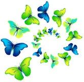 Espiral del vector de las mariposas Fotos de archivo libres de regalías