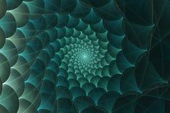 Espiral del web de araña Imágenes de archivo libres de regalías